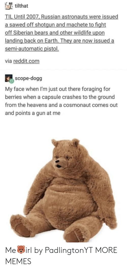 scope: RE  tilthat  TIL Until 2007, Russian astronauts were issued  a sawed off shotgun and machete to fight  off Siberian bears and other wildlife upon  landing back on Earth. They are now issued a  semi-automatic pistol.  via reddit.com  scope-dogg  My face when I'm just out there foraging for  berries when a capsule crashes to the ground  from the heavens and a cosmonaut comes out  and points a gun at me Me🐻irl by PadlingtonYT MORE MEMES