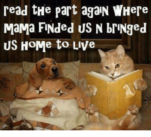 bringed: read tHe part agaN WHere  MaMa FINded US N briNged  US HoMe to uve