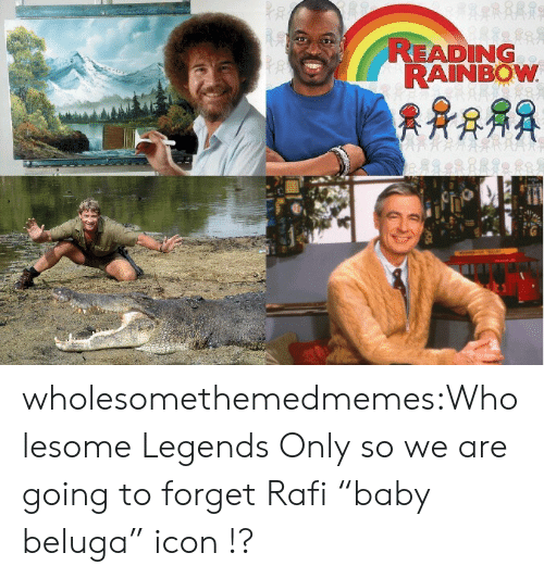 """reading rainbow: READING  RAINBOW wholesomethemedmemes:Wholesome Legends Only so we are going to forget Rafi""""baby beluga"""" icon !?"""