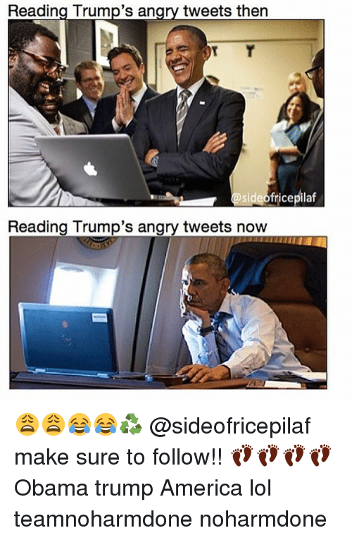 Memes, Angry, and 🤖: Reading Trump's an  tweets then  fricepilaf  side Reading Trump's angry tweets now 😩😩😂😂♻️ @sideofricepilaf make sure to follow!! 👣👣👣👣 Obama trump America lol teamnoharmdone noharmdone