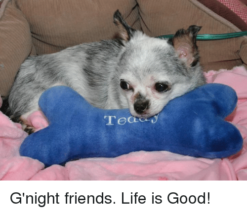 memes: ready G'night friends.  Life is Good!