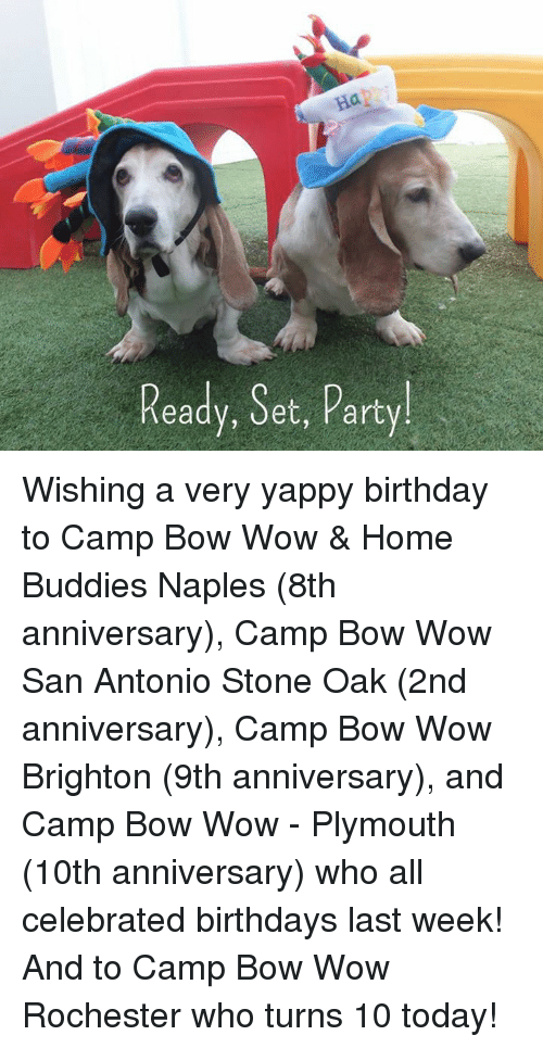 Camp Bow Wow San Antonio Airport, San Antonio, TX. K likes. Camp Bow Wow® San Antonio - Airport provides a fun, safe and upscale environment for dogs /5().