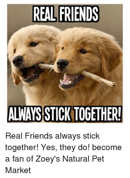 friends of a feather stick together When people that act the same, hang out together people that have the same morals often tend to group it has nothing to do with jealousy, nor the amount of friends a person is allowed to.