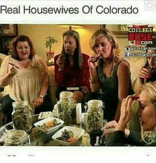 College, Memes, and Colorado: Real Housewives Of Colorado  COLLEGE  .com