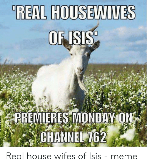 Isis Meme: REAL HOUSEWIVES  OF ISIS  PREMIERES MONDAY ON  CHANNEL 762 Real house wifes of Isis - meme