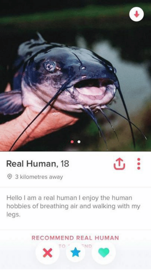 Hello, Human, and Air: Real Human, 18  O 3 kilometres away  Hello I am a real human I enjoy the human  hobbies of breathing air and walking with my  legs.  RECOMMEND REAL HUMAN  TO  END