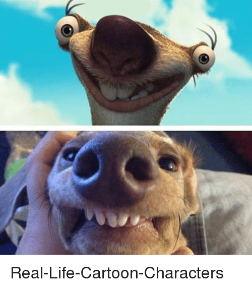 Funny Meme Real Life : Real life cartoon characters funny meme on sizzle