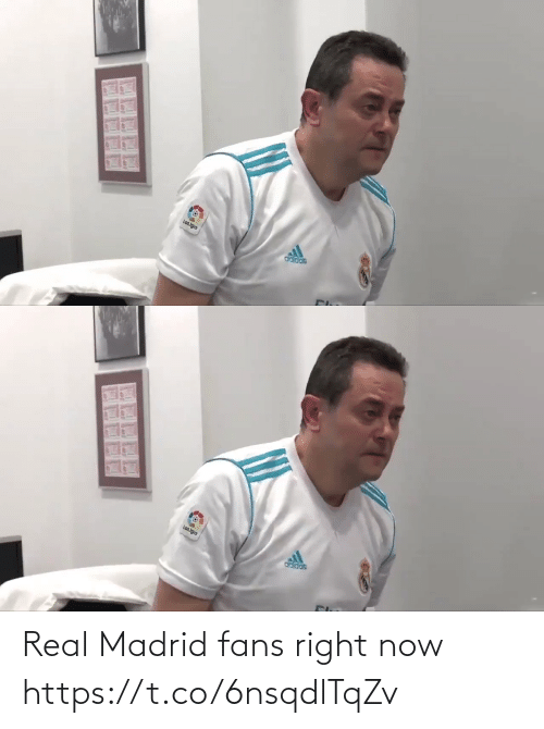 madrid: Real Madrid fans right now  https://t.co/6nsqdlTqZv
