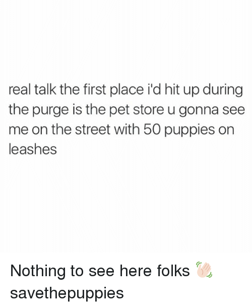 The Purge: real talk the first place id hit up during  the purge is the pet store u gonna see  me on the street with 50 puppies on  leashes Nothing to see here folks 👋🏻 savethepuppies
