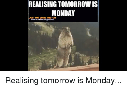 Funny Tomorrow Is Monday Meme : Best memes about tomorrow is monday