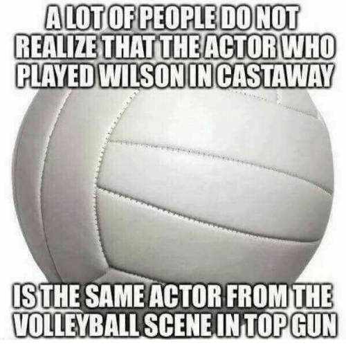 castaway: REALIZE THAT THE ACTORWHO  PLAYED WILSON IN CASTAWAY  FROM THE  ISTHE SAME ACTOR  VOLLEYBALL SCENEINTOPGUN
