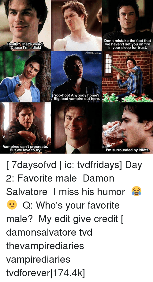 im surrounded by idiots: Really? That's weird.  Cause l'm a dick!  Don't mistake the fact that  we haven't set you on fire  in your sleep for trust.  Yoo-hoo! Anybody home?  Big, bad vampire out here.  Vampires can't procreate.  ut we love to try  OBR  I'm surrounded by idiots [ 7daysofvd | ic: tvdfridays] Day 2: Favorite male ↳ Damon Salvatore ⠀ I miss his humor 😂😕 ⠀ Q: Who's your favorite male? ⠀ My edit give credit [ damonsalvatore tvd thevampirediaries vampirediaries tvdforever|174.4k]