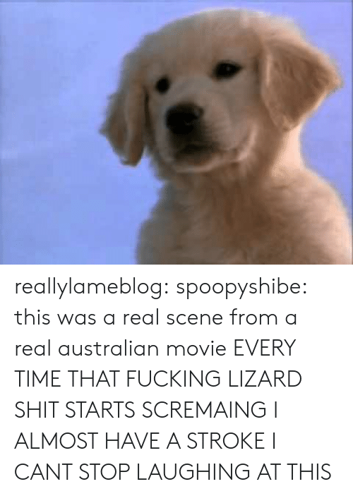 stroke: reallylameblog:  spoopyshibe:  this was a real scene from a real australian movie  EVERY TIME THAT FUCKING LIZARD SHIT STARTS SCREMAING I ALMOST HAVE A STROKE I CANT STOP LAUGHING AT THIS