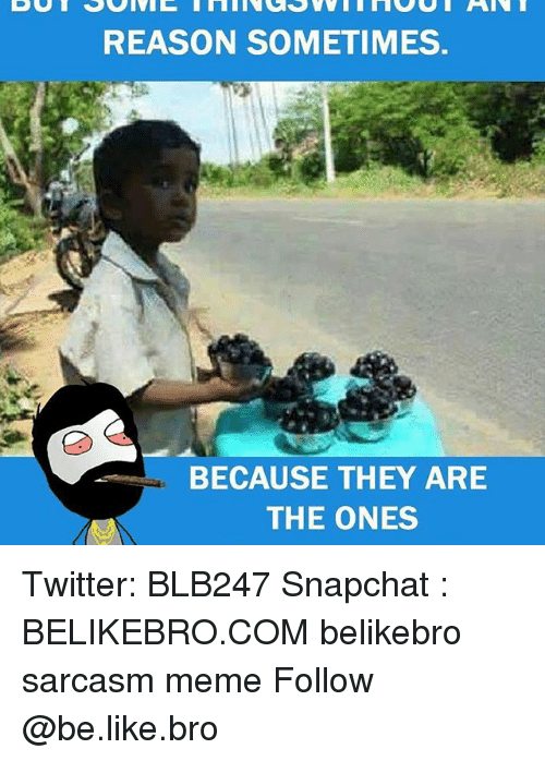 Memes, 🤖, and Bro: REASON SOMETIMES.  BECAUSE THEY ARE  THE ONES Twitter: BLB247 Snapchat : BELIKEBRO.COM belikebro sarcasm meme Follow @be.like.bro