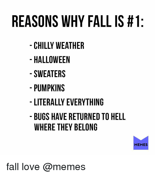 Love Memes: REASONS WHY FALL IS #1  CHILLY WEATHER  HALLOWEEN  SWEATERS  PUMPKINS  LITERALLY EVERYTHING  BUGS HAVE RETURNED TO HELL  WHERE THEY BELONG  MEMES fall love @memes