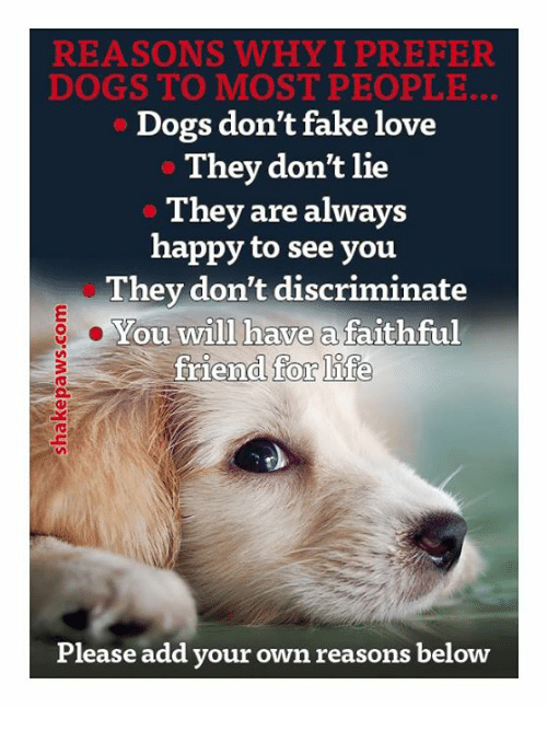 Discriminize: REASONS WHY I PREFER  DOGS TO MOST PEOPLE.  Dogs don't fake love  They don't lie  They are always  happy to see you  They don't discriminate  You will have a faithful  friend for life  Please add your own reasons below