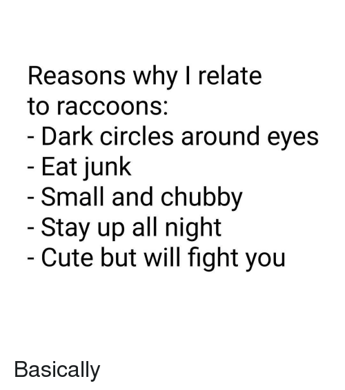 Staying Up All Night: Reasons why I relate  to raccoons  Dark circles around eyes  Eat junk  Small and Chubby  Stay up all night  Cute but will fight you Basically