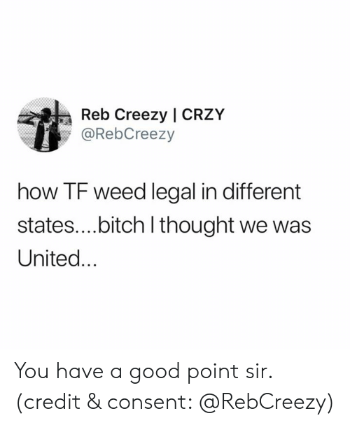 Good Point: Reb Creezy | CRZY  @RebCreezy  how TF weed legal in different  states....bitch I thought we was  United... You have a good point sir. (credit & consent: @RebCreezy)