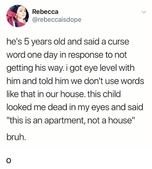 """Bruh, Tumblr, and House: Rebecca  @rebeccaisdope  he's 5 years old and said a curse  word one day in response to not  getting his way. i got eye level with  him and told him we don't use words  like that in our house. this child  looked me dead in my eyes and said  """"this is an apartment, not a house""""  bruh. o"""