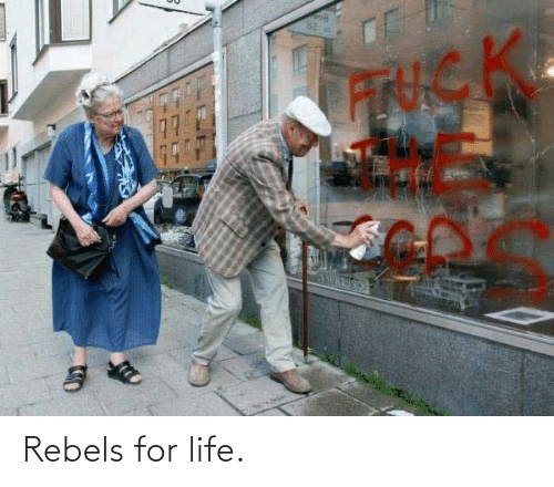 rebels: Rebels for life.
