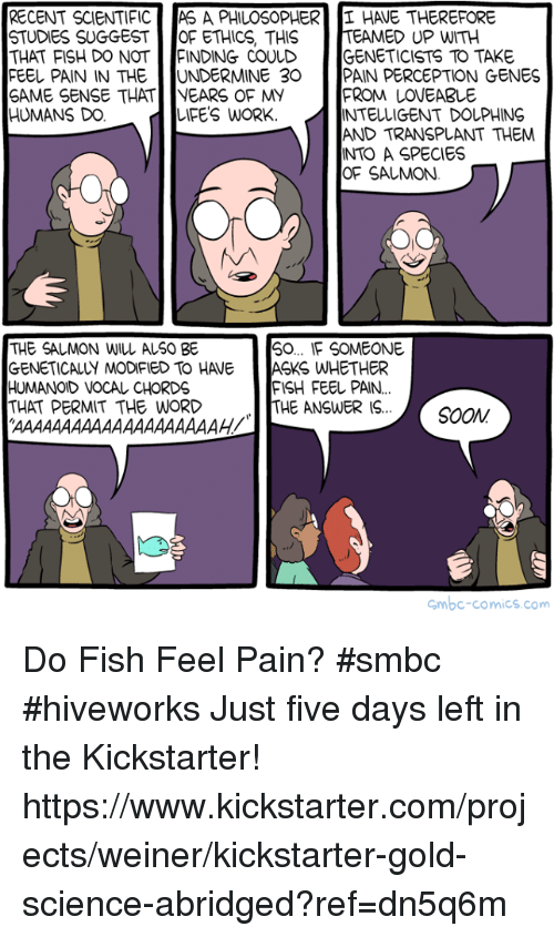 Memes, Work, and Fish: RECENT SCIENTIFIC AS A PHILOSOPHER HAVE THEREFORE  STUDIES SUGGEST OF ETHICS, THISTEAMED UP WITH  THAT FISH DO NOT NDING COULD :ENETICISTS TO TAKE  FEE PAIN IN THE UNDERMINE 30 PAIN PERCEPTION GENES  SAME SENSE THAT I NEARS OF MY  HUMANS DO. IFE'S WORK.  LDGENETICIST TO TAKE  FROM LOVEABLE  INTELLIGENT DOLPHING  AND TRANSPLANT THEM  INTO A SPECIES  OF SALMON.  THE SALMON WILL ALSO BE  GENETICALLY MODIFIED TO HAVE  HUMANOID VOCAL CHORDS  THAT PERMIT THE WORD  0.. F SOMEONE  ASKS WHETHER  FISH FEEしPAIN.  THE ANSWER IS.  mbc-comics.com Do Fish Feel Pain? #smbc #hiveworks  Just five days left in the Kickstarter! https://www.kickstarter.com/projects/weiner/kickstarter-gold-science-abridged?ref=dn5q6m