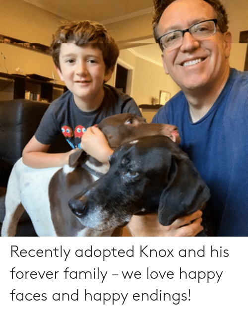 happy faces: Recently adopted Knox and his forever family – we love happy faces and happy endings!