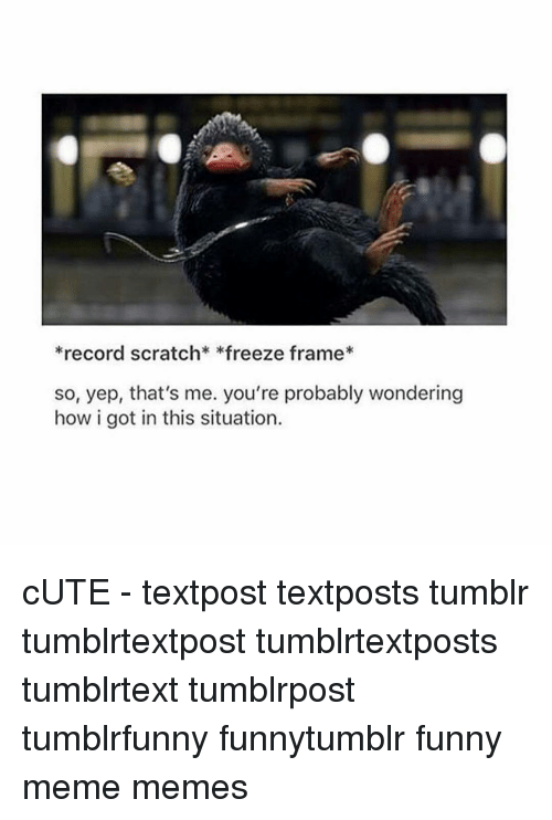 Tumblr, Record Scratch Freeze Frame, and Record: *record scratch *freeze frame  so, yep, that's me. you're probably wondering  how i got in this situation. cUTE - textpost textposts tumblr tumblrtextpost tumblrtextposts tumblrtext tumblrpost tumblrfunny funnytumblr funny meme memes