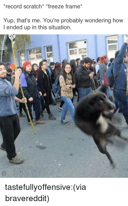 Record Scratch: record scratch* *freeze frame  Yup, that's me. You're probably wondering how  I ended up in this situation. tastefullyoffensive:(via bravereddit)