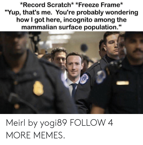 """Record Scratch: *Record Scratch* *Freeze Frame*  """"Yup, that's me. You're probably wondering  how I got here, incognito among the  mammalian surface population."""" Meirl by yogi89 FOLLOW 4 MORE MEMES."""