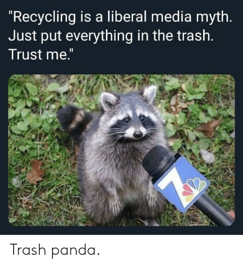 "Trash Panda: ""Recycling is a liberal media myth.  Just put everything in the trash.  Trust me."" Trash panda."