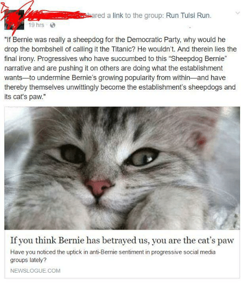 """Fullcommunism and Drop: red a link to the group: Run Tulsi Run  19 hrs  """"If Bernie was really a sheepdog for the Democratic Party, why would he  drop the bombshell of calling it the Titanic? He wouldn't. And therein lies the  final irony. Progressives who have succumbed to this """"Sheepdog Bernie""""  narrative and are pushing it on others are doing what the establishment  wants to undermine Bernie's growing popularity from within and have  thereby themselves unwittingly become the establishment's sheepdogs and  its cat's paw.  If you think Bernie has betrayed us, you are the cat's paw  Have you noticed the uptick in anti-Bernie sentiment in progressive social media  groups lately?  NEWSLOGUE.COM"""