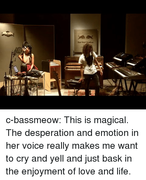 Enjoyment: Red Buil Studios c-bassmeow:  This is magical. The desperation and emotion in her voice really makes me want to cry and yell and just bask in the enjoyment of love and life.