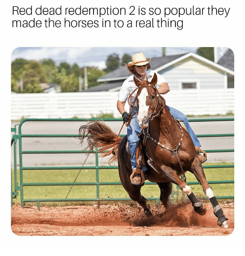 Red Dead Redemption: Red dead redemption 2 is so popular they  made the horses in to a real thing