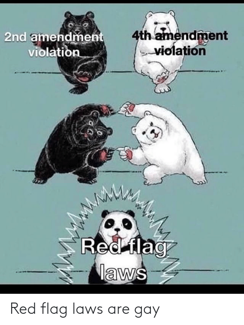 red flag: Red flag laws are gay