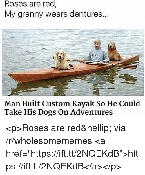 """Kayak: red,  Roses are  My granny wears dentures..  Man Built Custom Kayak So He Could  Take His Dogs On Adventures <p>Roses are red&hellip; via /r/wholesomememes <a href=""""https://ift.tt/2NQEKdB"""">https://ift.tt/2NQEKdB</a></p>"""