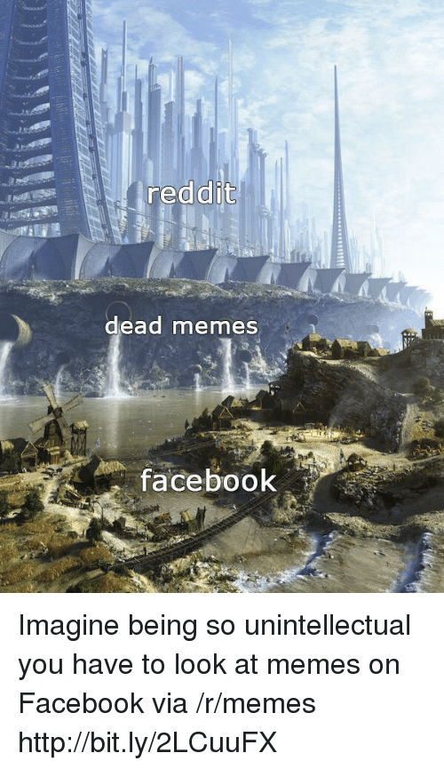 Dead Memes: reddit  dead memes  facebook Imagine being so unintellectual you have to look at memes on Facebook via /r/memes http://bit.ly/2LCuuFX