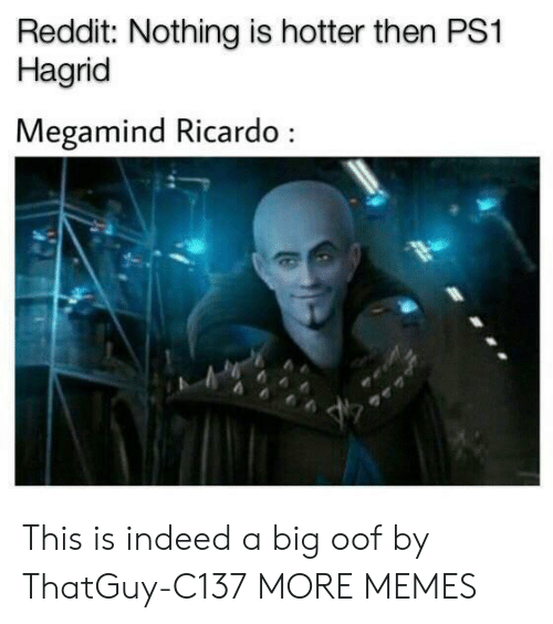 hagrid: Reddit: Nothing is hotter then PS1  Hagrid  Megamind Ricardo This is indeed a big oof by ThatGuy-C137 MORE MEMES