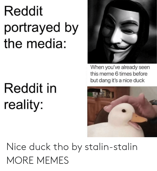 stalin: Reddit  portrayed by  the media:  When you've already seen  this meme 6 times before  but dang it's a nice duck  Reddit in  reality: Nice duck tho by stalin-stalin MORE MEMES