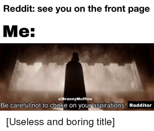Be Careful Not To Choke On Your Aspirations: Reddit: see you on the front page  Me  u/BrannyMuffins  Be careful not to choke on your aspirations, Redditor