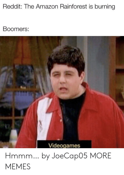 videogames: Reddit: The Amazon Rainforest is burning  Boomers:  Videogames Hmmm… by JoeCap05 MORE MEMES