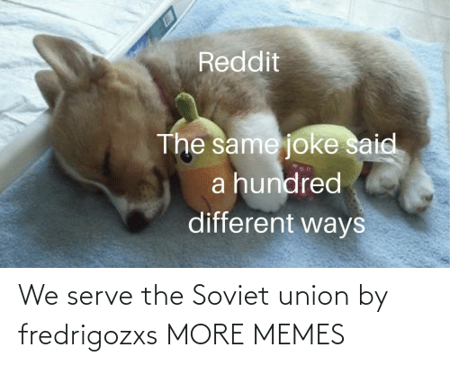 Soviet Union: Reddit  The same joke said  a hundred  different ways We serve the Soviet union by fredrigozxs MORE MEMES