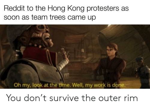 My Work Is Done: Reddit to the Hong Kong protesters as  Soon as team trees came up  Oh my, look at the time. Well, my work is done. You don't survive the outer rim