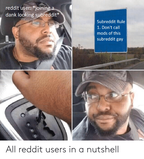 mods: reddit user: *joining a  dank looking subreddit*  Subreddit Rule  1. Don't call  mods of this  subreddit gay All reddit users in a nutshell