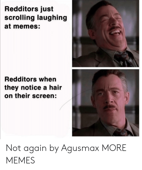 not again: Redditors just  scrolling laughing  at memes:  Redditors when  they notice a hair  on their screen: Not again by Agusmax MORE MEMES