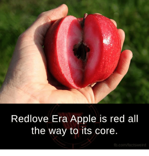 Apple, Memes, and fb.com: Redlove Era Apple is red all  the way to its core.  fb.com/factsweird