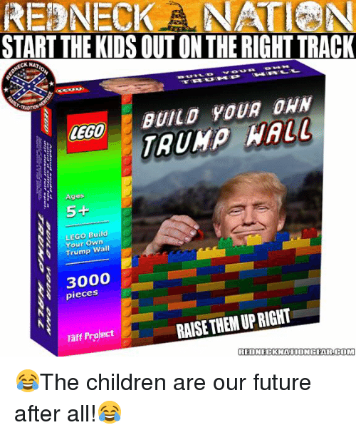 Taff: REDNECK NA  START THE KIDS OUT ON THE RIGHTTRACK  BUILD YOUR DHN  LEGO  Ages  5+  LEGO Build  Your Own  Trump  Wall  pieces  RAISE UPRIGHT  THEM Taff Project  REDNECKNATIONGEAR.COM 😂The children are our future after all!😂