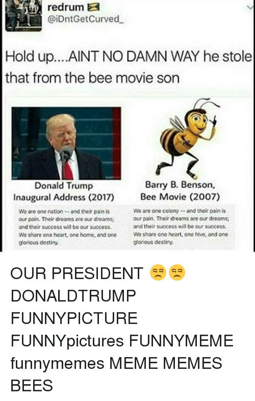 Bee Movie, Memes, and Glorious: redrum  @iDntGetCurved  Hold up. ...AINT NO DAMN WAY he stole  that from the bee movie son  Barry B. Benson,  Donald Trump  Inaugural Address (2017) Bee Movie (2007)  Wo are one colony and their pain is  Wo are one nation and their pain is  our pain. Their dreams are our dreams;  our pain. Their dreams are our dreams  and their success wilbe our success.  and their success wilbe our success,  Wo share one heart, one home, and one  Wo share one heart, one hive, and one  glorious destiny.  glorious destiny. OUR PRESIDENT 😒😒 DONALDTRUMP FUNNYPICTURE FUNNYpictures FUNNYMEME funnymemes MEME MEMES BEES