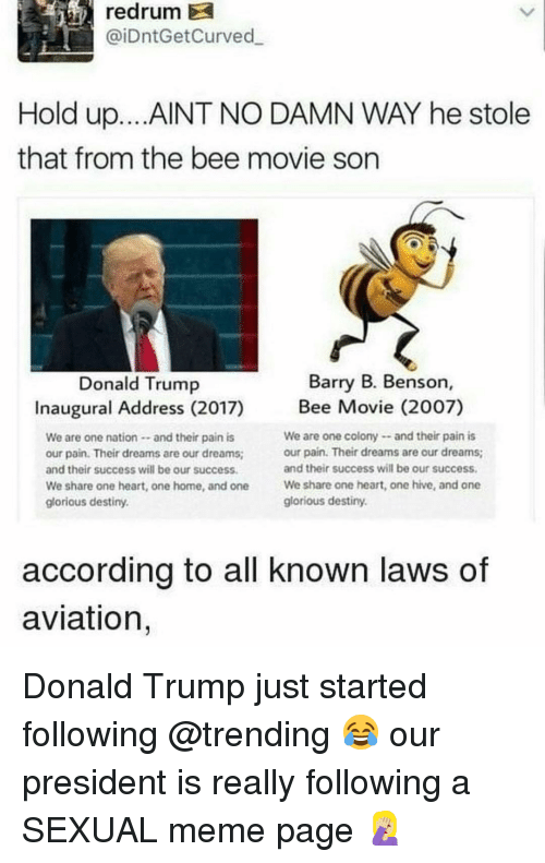 the bee movie: redrum  @iDntGetCurved  Hold up... AINT NO DAMN WAY he stole  that from the bee movie son  Barry B. Benson,  Donald Trump  Inaugural Address (2017)  We are one nation-and their pain is  our pain. Their dreams are our dreams  and their success will be our success  We share one heart, one home, and one  glorious destiny.  Bee Movie (2002)  We are one colonyand their pain is  our pain. Their dreams are our dreams  and their success will be our success  We share one heart, one hive, and one  glorious destiny.  according to all known laws of  aviation, Donald Trump just started following @trending 😂 our president is really following a SEXUAL meme page 🤦🏼