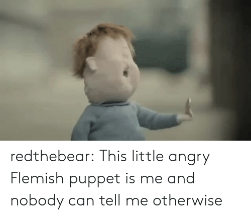 puppet: redthebear:    This little angry Flemish puppet is me and nobody can tell me otherwise