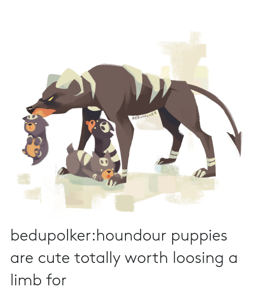 loosing: REDUPOLKER bedupolker:houndour puppies are cute totally worth loosing a limb for